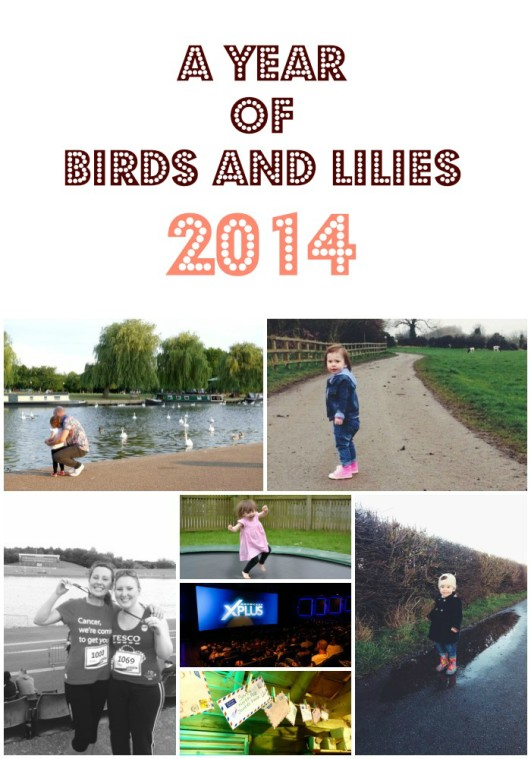 A Year of Birds and Lilies 2014