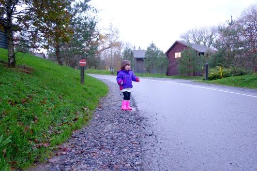Exploring Bluestone Wales