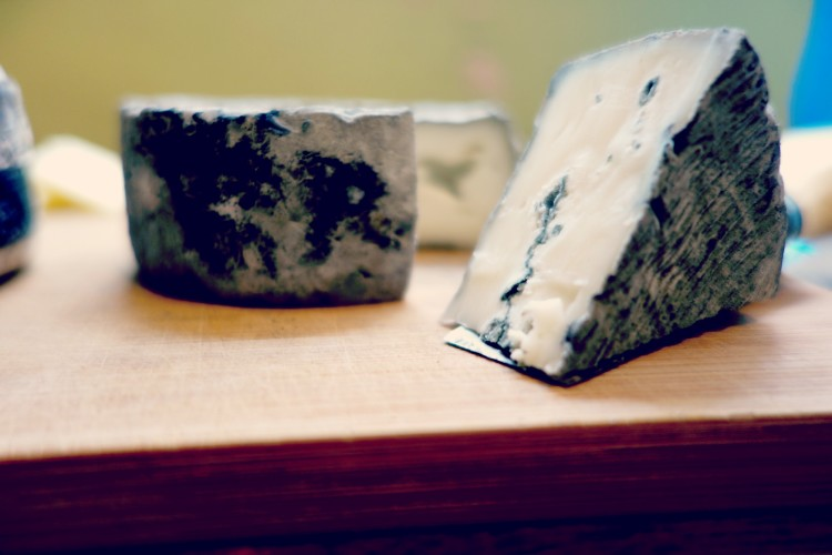 Cheese from the french terroir