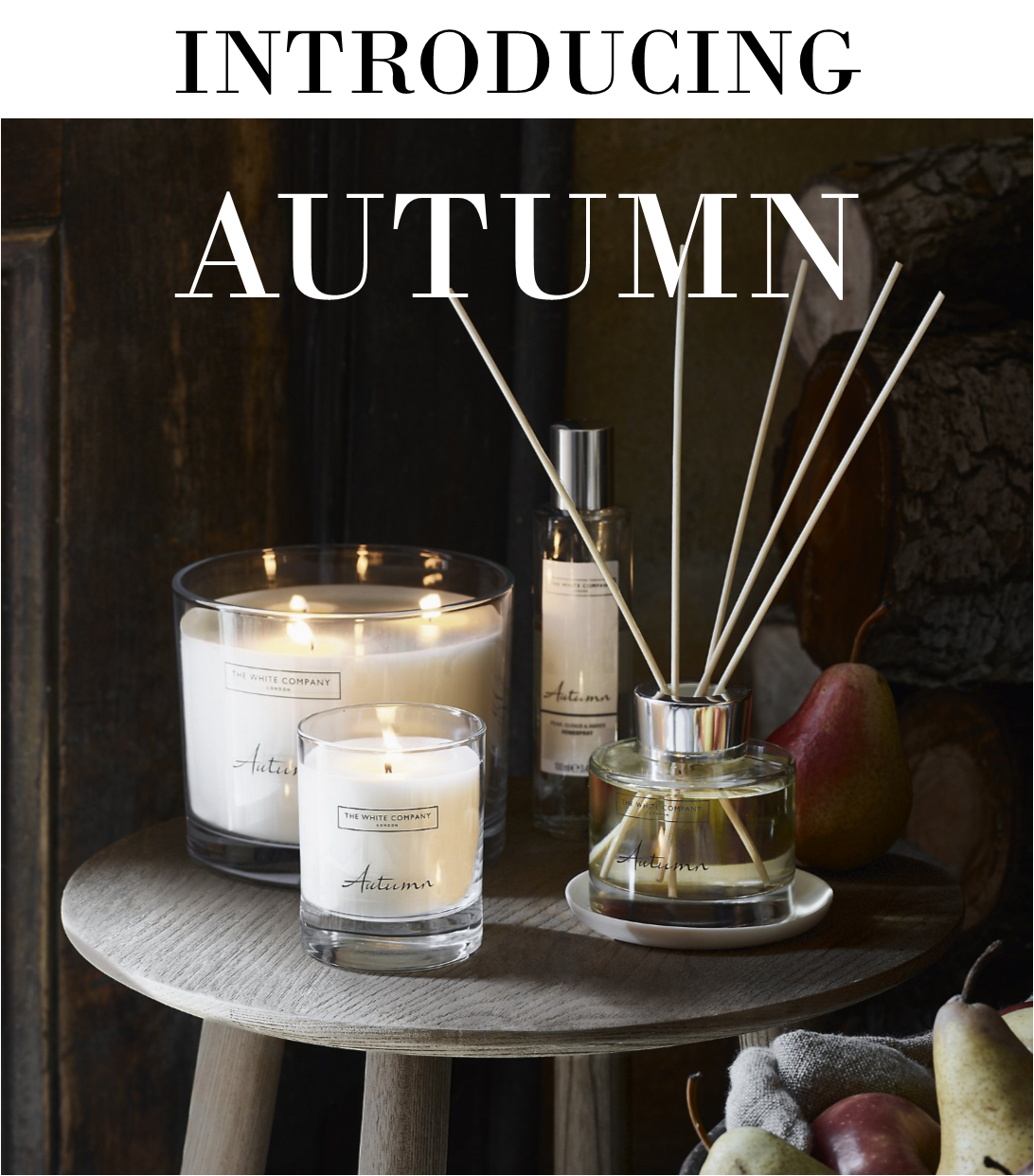 white company autumn
