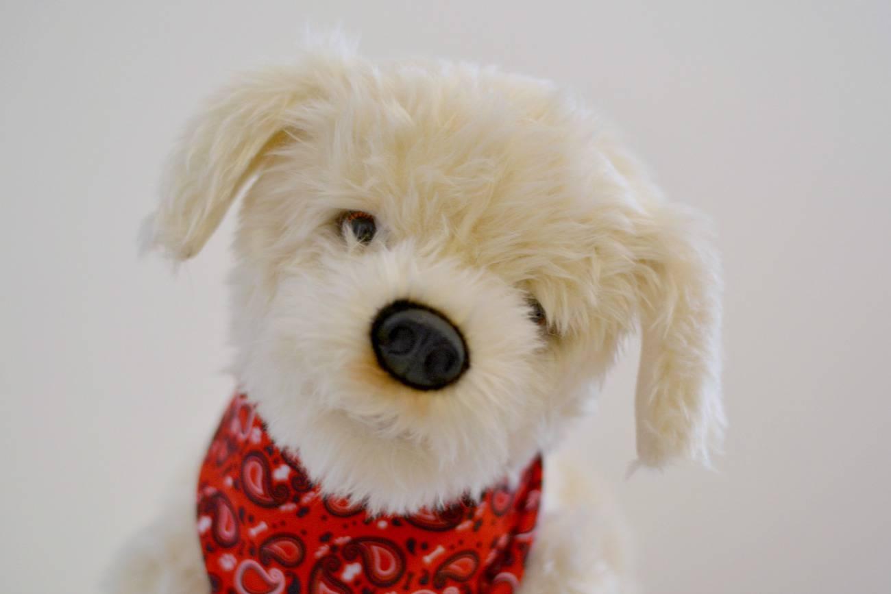georgie the interactive puppy