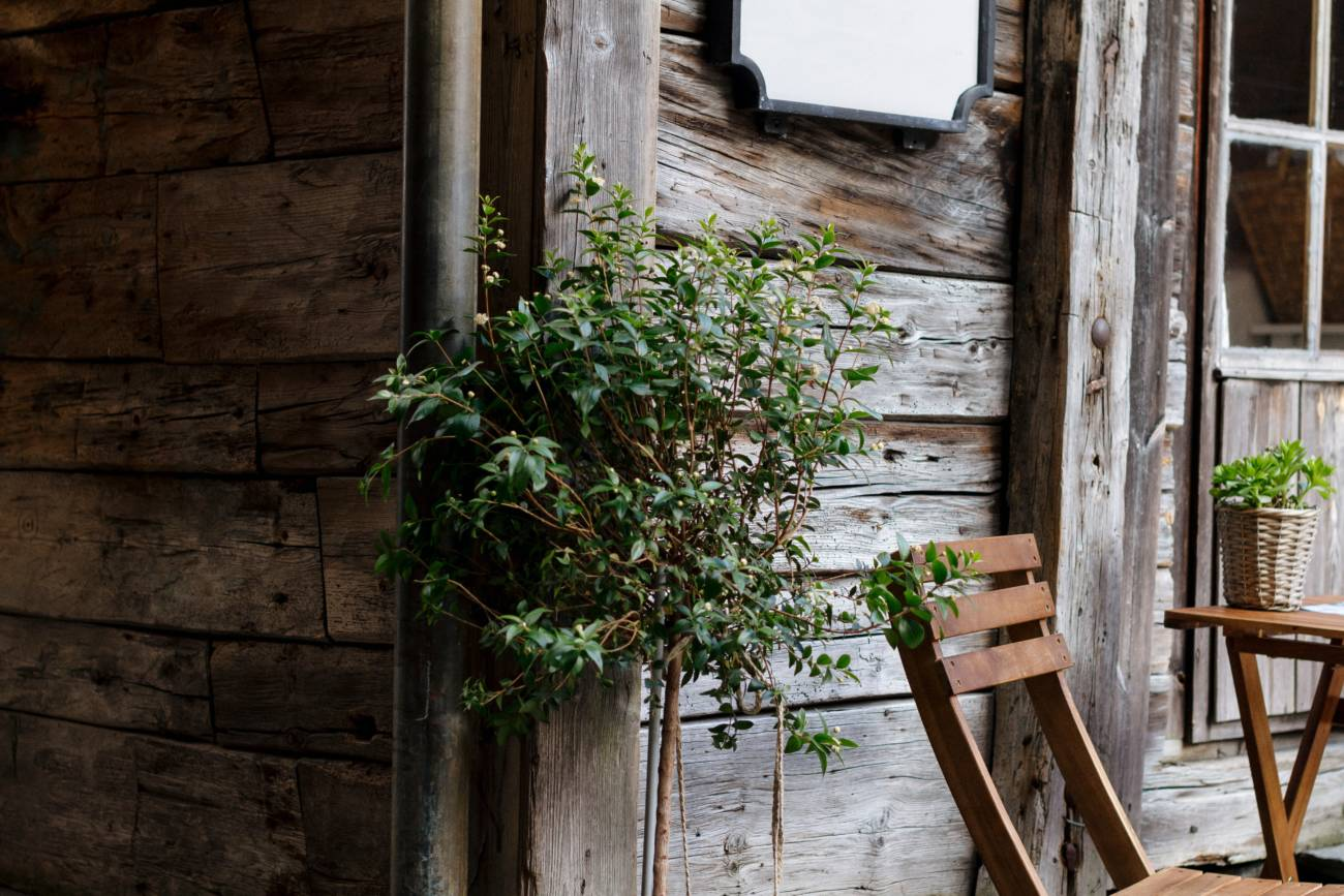 Choosing the Right Type of Garden Shed