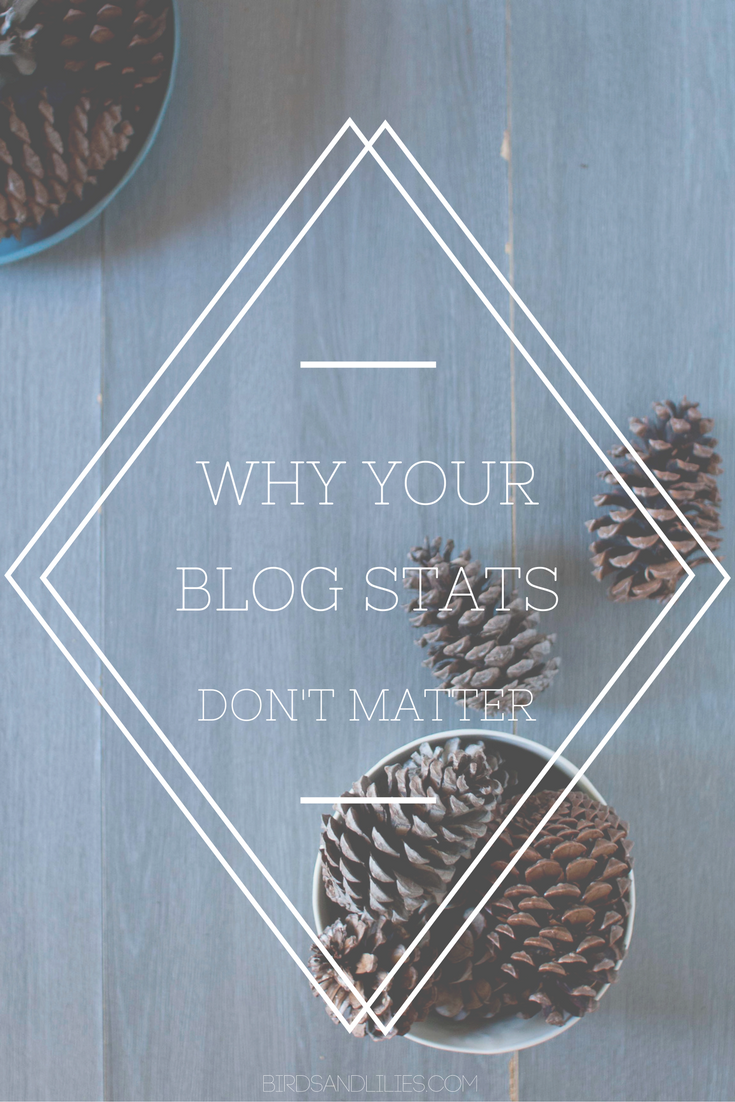 Find out why your blog stats don' t really mean anything, and why you shouldn't compare your numbers to other bloggers.
