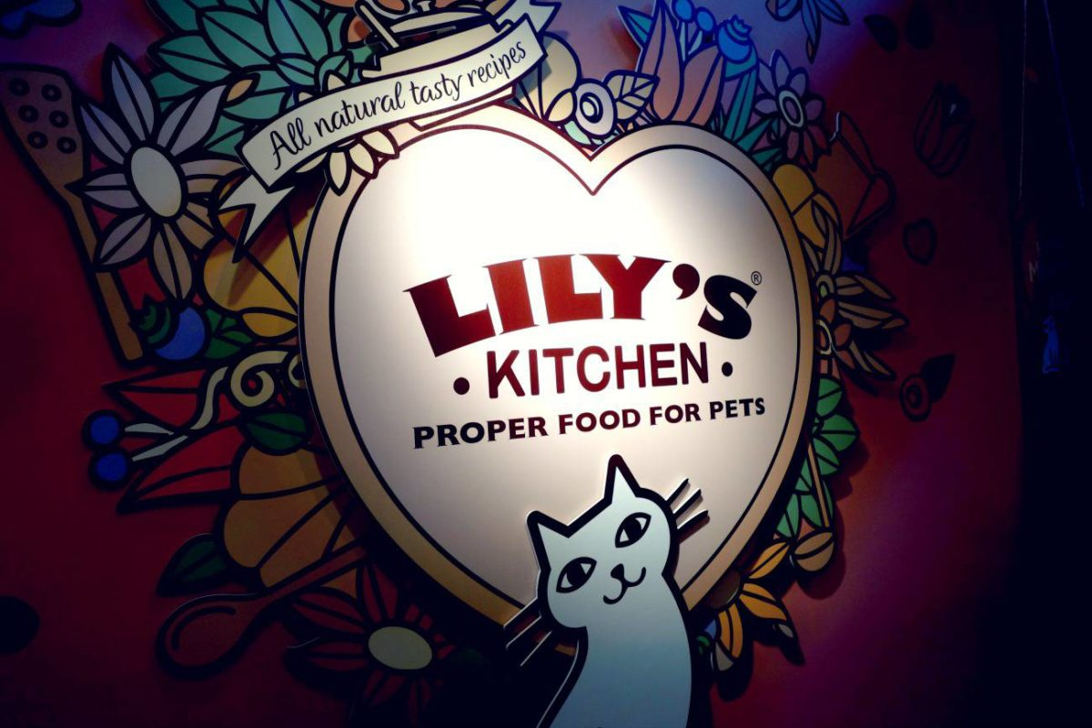 Cheap Tins Of Cat Food